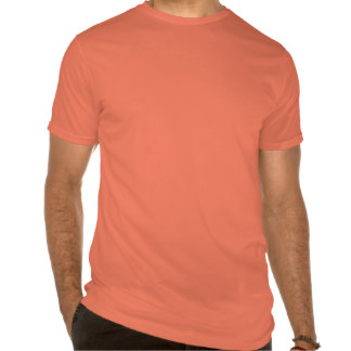 Silicon Valley Sports League T Shirts