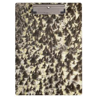 Silk Floss Tree Clipboard