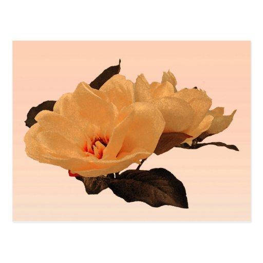 Silk Flowers Post Card