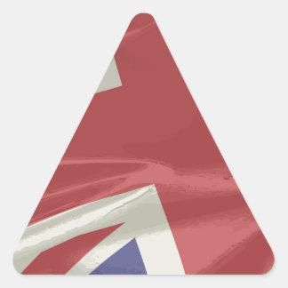 Silk Union Jack Flag Closeup Triangle Sticker