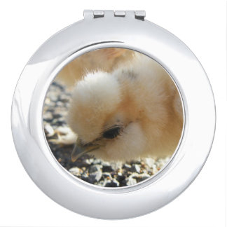 Silkie Chicken Chick Mirror For Makeup