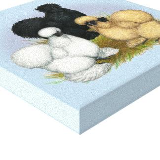 Silkie Trio Canvas Print