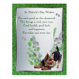 Silky Puppy St Pattys Health Luck Happiness Wishes Postcard