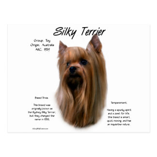 Silky Terrier History Design Postcard