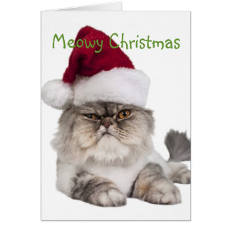Silly Cat with Santa Hat Card