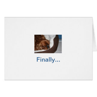 Silly Dog Retirement Greeting Card