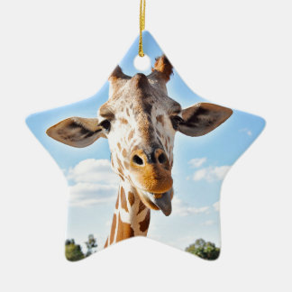 Silly Giraffe Ceramic Ornament