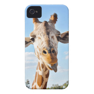 Silly Giraffe iPhone 4 Covers