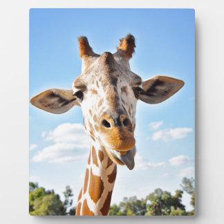 Silly Giraffe Plaque
