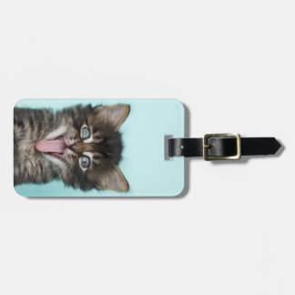 Silly Merlin Kitten Luggage Tag