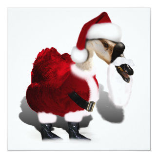 Silly Santa Goose - A Web Footed Christmas 13 Cm X 13 Cm Square Invitation Card