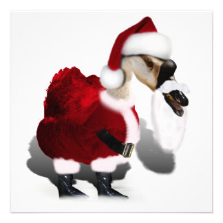 Silly Santa Goose - A Web Footed Christmas Invites