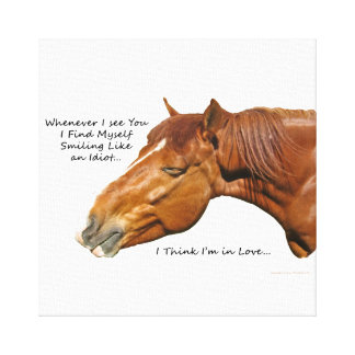 Silly Smile Stretched Canvas Prints