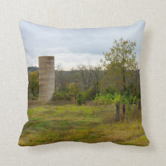 Silo Still Stands Throw Pillow