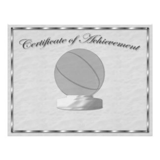 Silver Basketball Certificate of Achievement 21.5 Cm X 28 Cm Flyer