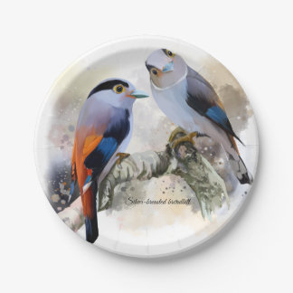 Silver-breasted broadbill paper plate