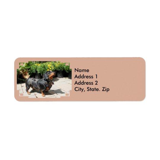 Silver Dapple Dachshund Buddy 2 Return Address Label