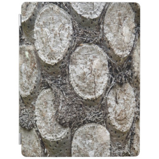 Silver Fern Tree iPad Cover