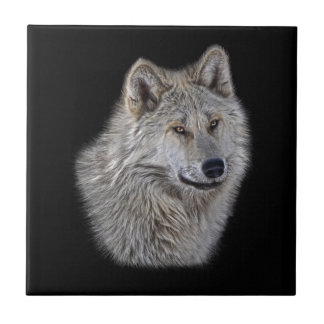 Silver Grey Wolf Wildlife Portrait Small Square Tile