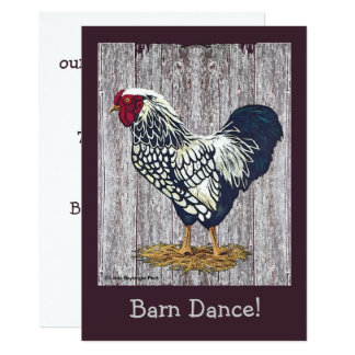 Silver Laced Wyandotte Rooster Card