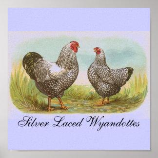 Silver Laced Wyandottes Print
