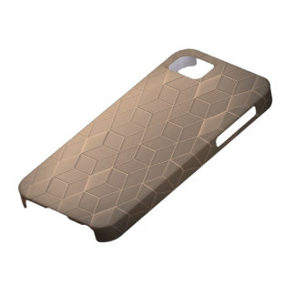 Silver Lines iPhone 5 Cases