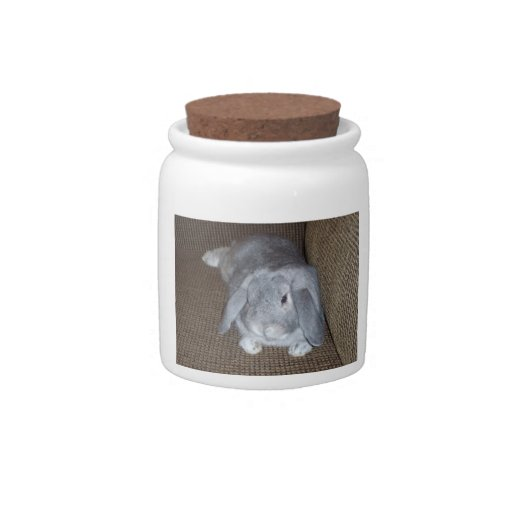 Silver Lop-Eared Bunny Rabbit Candy Jar