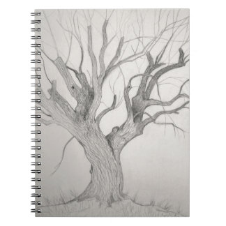 Silver Maple Notebook