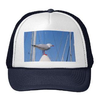 Silver Seagull Cap