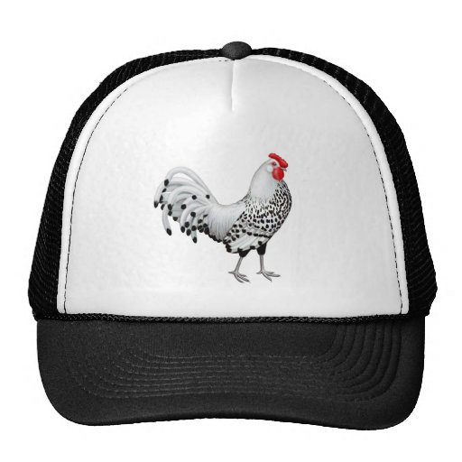 Silver Spangled Hamburg Rooster Hat