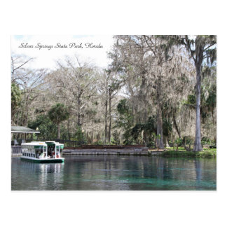 Silver Springs, Florida, Glass Bottom Boat Postcard