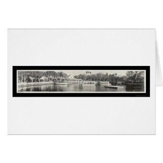 Silver Springs Florida Photo 1951 Card