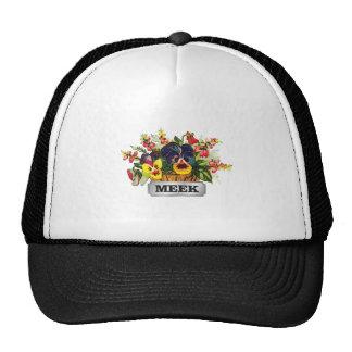 silver tag meek cap