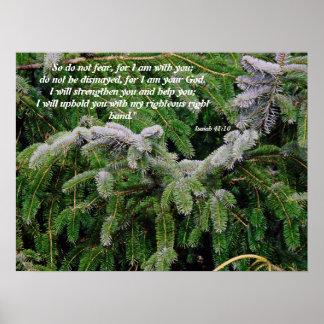 Silver Tip Fir Tree Isaiah 41:10 Print