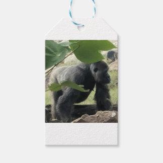 Silverback Gorilla Gift Tags