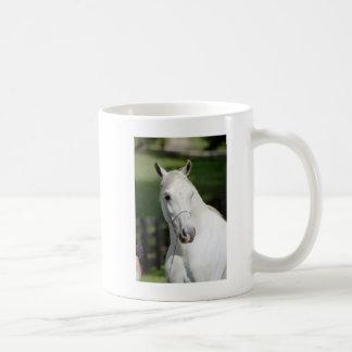 Silverstoneshamal Coffee Mug