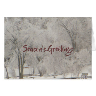 Silvery Trees Season's Greetings Card