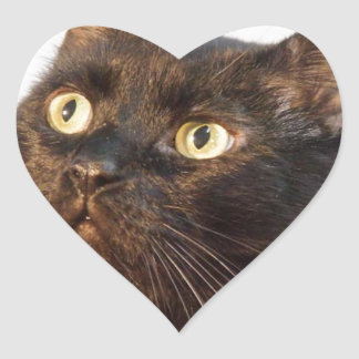 Simon Heart Sticker