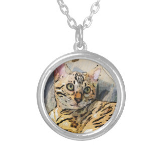 SIMON IN LIGHT SILVER PLATED NECKLACE