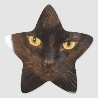 Simon Star Sticker