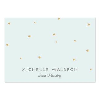 Simple Elegant Gold Stars Event Planner Light Aqua Pack Of Chubby Business Cards