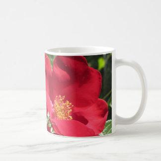 Simple Red Roses Coffee Mug