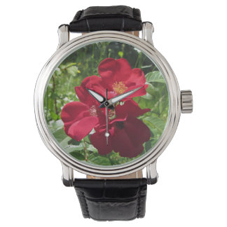 Simple Red Roses wms watch