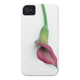 Simplicity iPhone 4 Case-Mate Cases