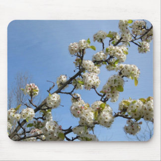 Simplicity of Spring Mouse Pad