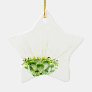Simplistic White Zinnia Ceramic Star Decoration