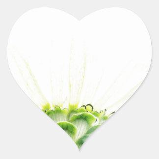 Simplistic White Zinnia Heart Sticker