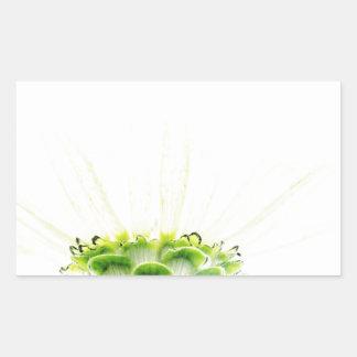 Simplistic White Zinnia Rectangular Sticker
