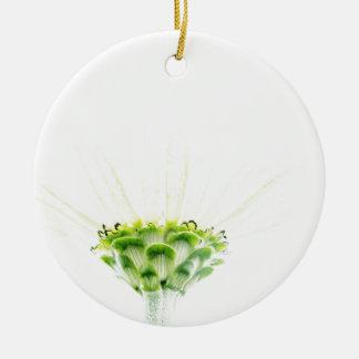 Simplistic White Zinnia Round Ceramic Decoration