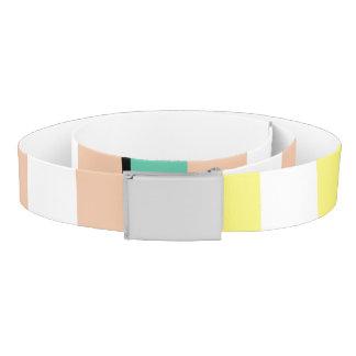 simply stripes mint dusty belt